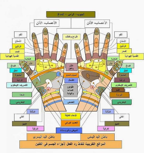 التسبيح على اصابع اليد له فوائد طبية .. علم الريفلكسولوجي