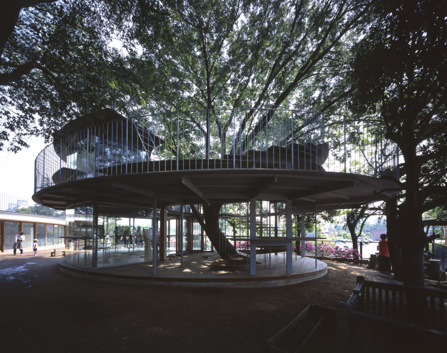 ring around a tree by tezuka architects housevariety