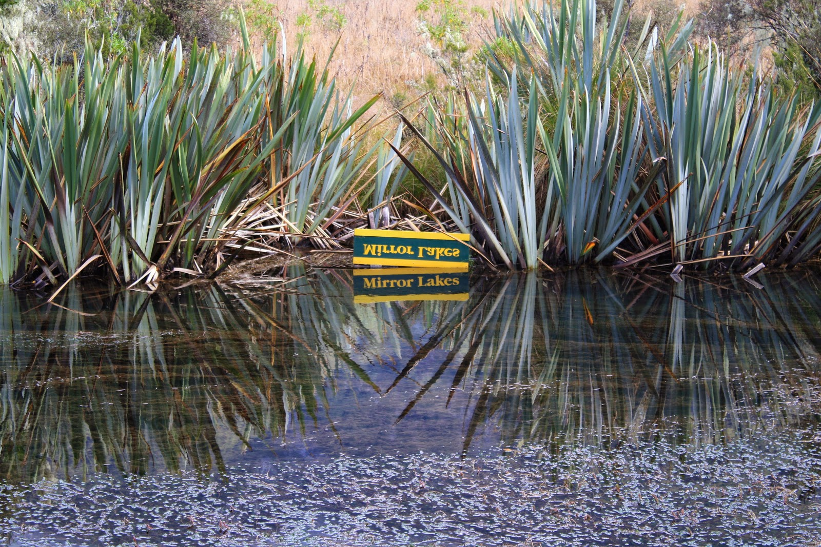 Mirror Lakes. There's a sign which is written in mirror image, and it's reflected in the lake so it reads properly.