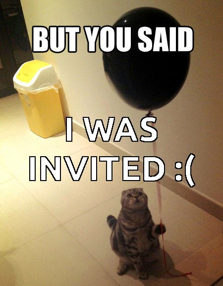 cat not invited to the party MEME