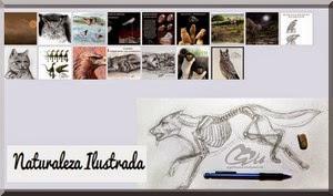 Diseño e Ilustración del Cuento realizado por: