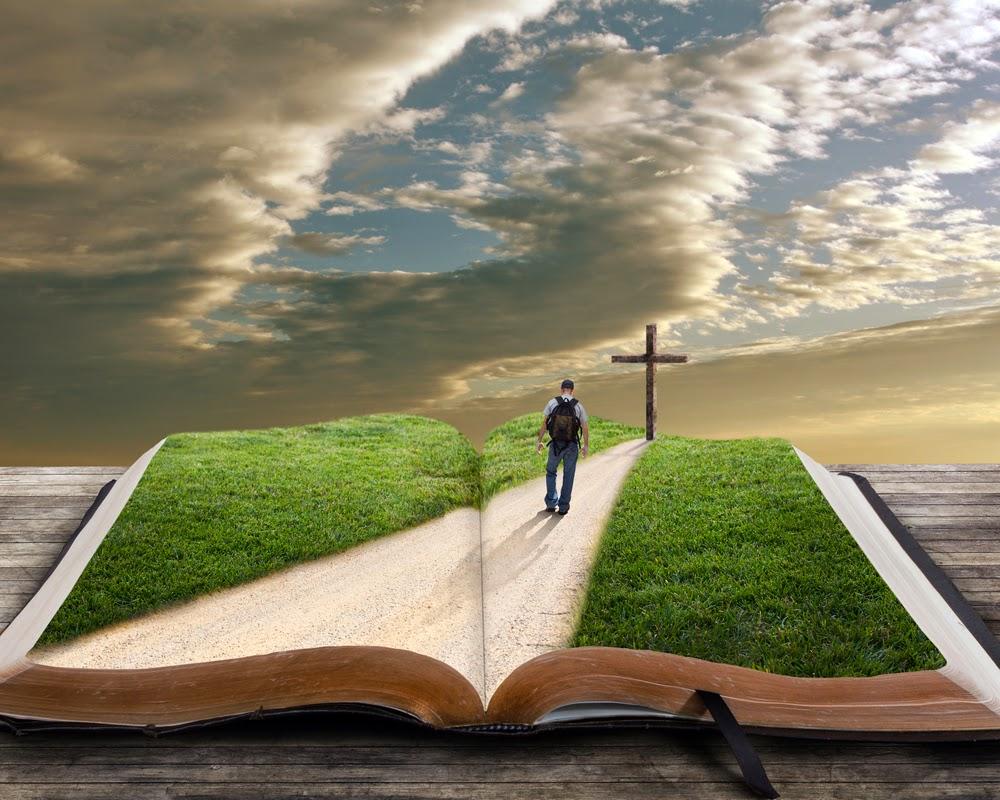 Como Ter Discernimento da Bíblia