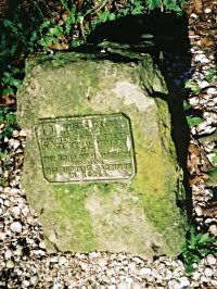 One of the stones in Dead mans Wood