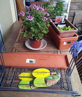 Des balconnières, des supports de rambardes de terrasse, des fraisiers, des salades...