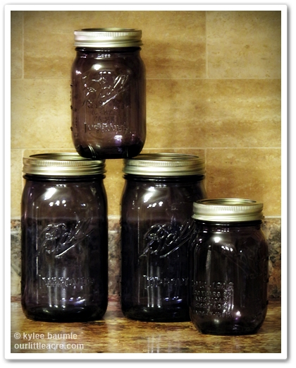 http://www.freshpreservingstore.com/ball-heritage-collection-pint-jars-set-of-6/shop/632810/
