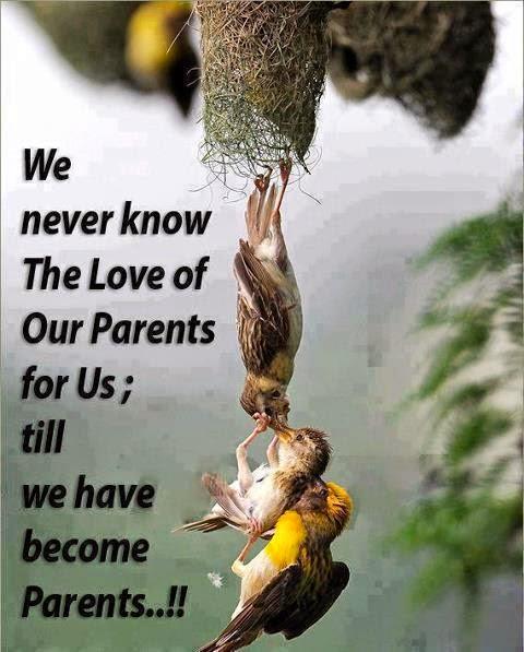 Saya sayang mak sangat-sangat!
