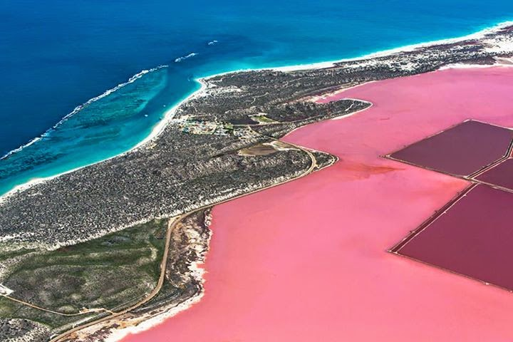 Natural Pink Lakes of Perth, Australia - Hutt Lagoon at Port Gregory