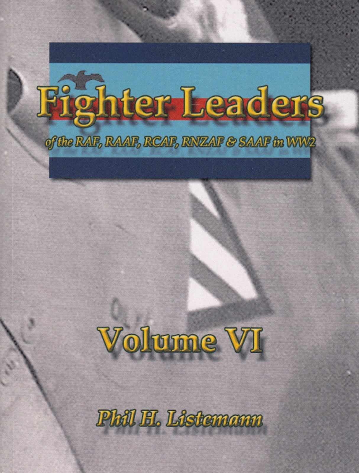 Fighter Leaders VI