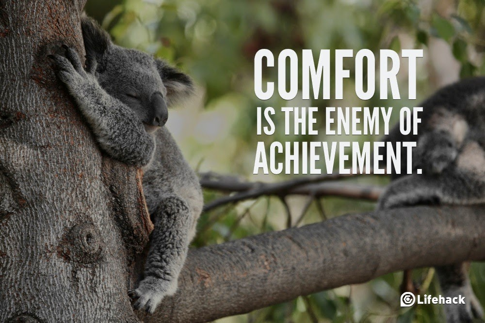 "10 Sentences that Can Change Your Life - ""Comfort is the enemy of achievement."""