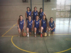 basquetbol media damas 2014