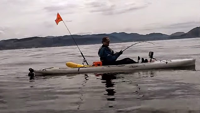 A Kayak Fisher trying to pull the octopus.