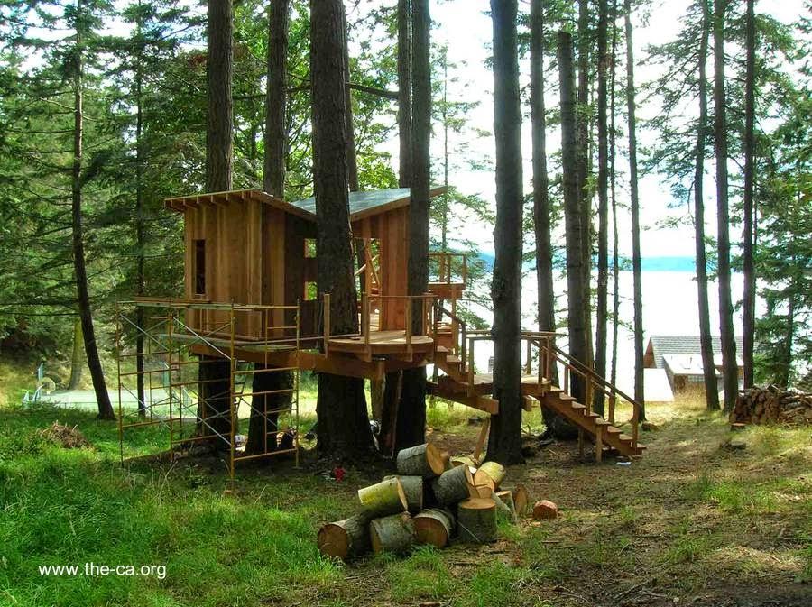 Casa del árbol pequeña en un bosque
