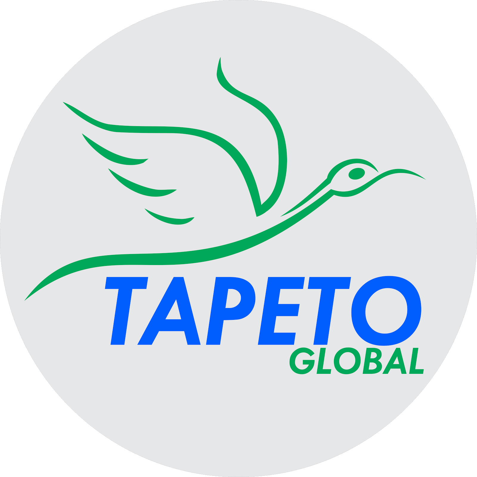 Tapeto Global Tour and Travel