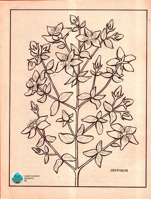 Советские раскраски для детей скачать распечатать СССР версия для печати скан старые из детства