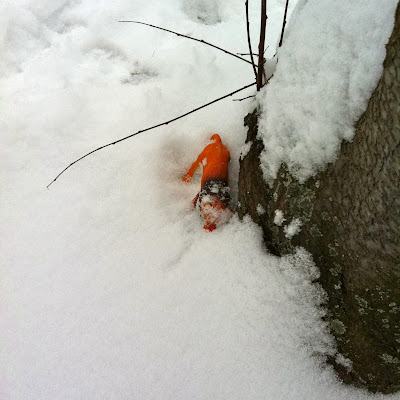 hide and seek toys in the snow - lion