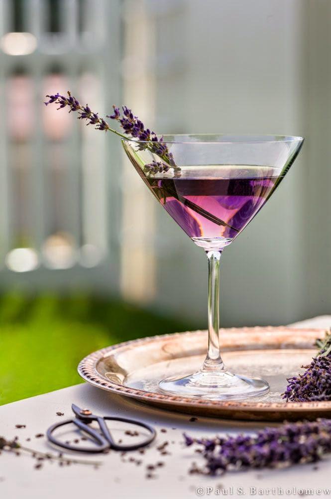 The Colour Purple/lulu klein