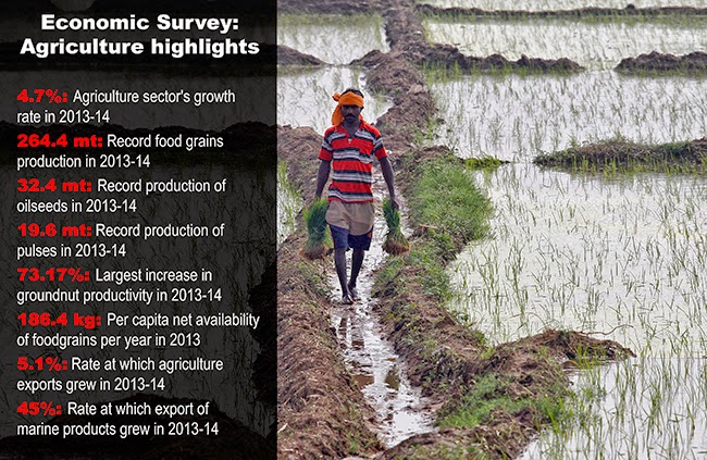 Agriculture-growth-GDP-India