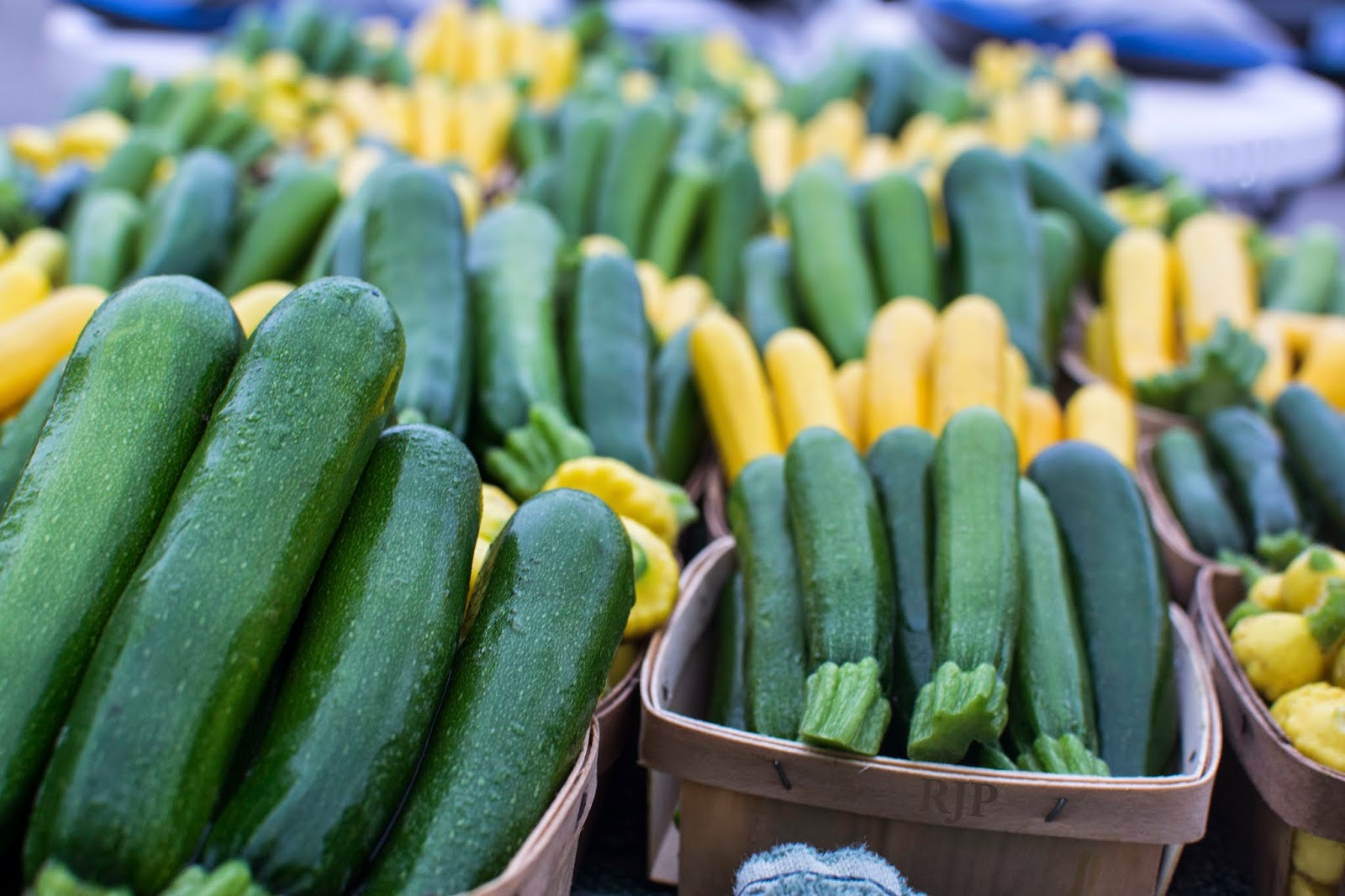 Baby Zucchini available throughout the summer. Photo Credit: Reed Petersen