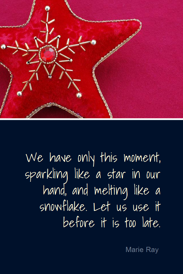 visual quote - image quotation for AWARENESS - We have only this moment, sparkling like a star in our hand, and melting like a snowflake. Let us use it before it is too late. - Marie Ray