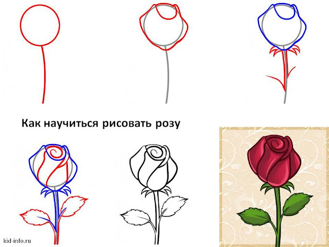 Сдам квартиру уроки рисования с нуля карандашом поэтапно Совместные покупки Пермь