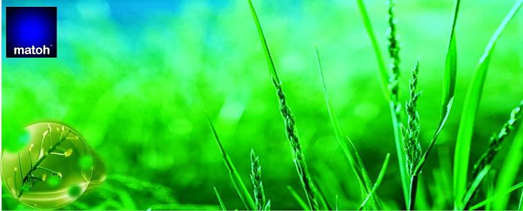 Power Weeder, Alat Penyiang Gulma Satu Roda, 081299338828, Alat Pertanian, arti penyiangan tanaman