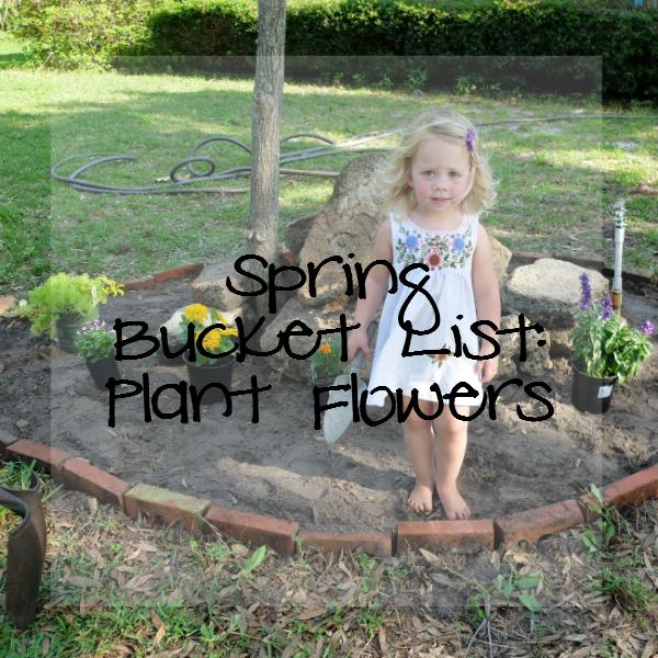 Sweet Turtle Soup: Spring Bucket List - Plant Flowers