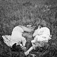 Wild Cub - 'Youth' CD Review (Keegan DeWitt + Jeremy Bullock)
