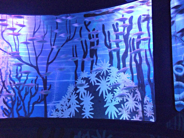 Sea Life aquarium, #HomeGrownTravel, travel, Dallas/Fort Worth