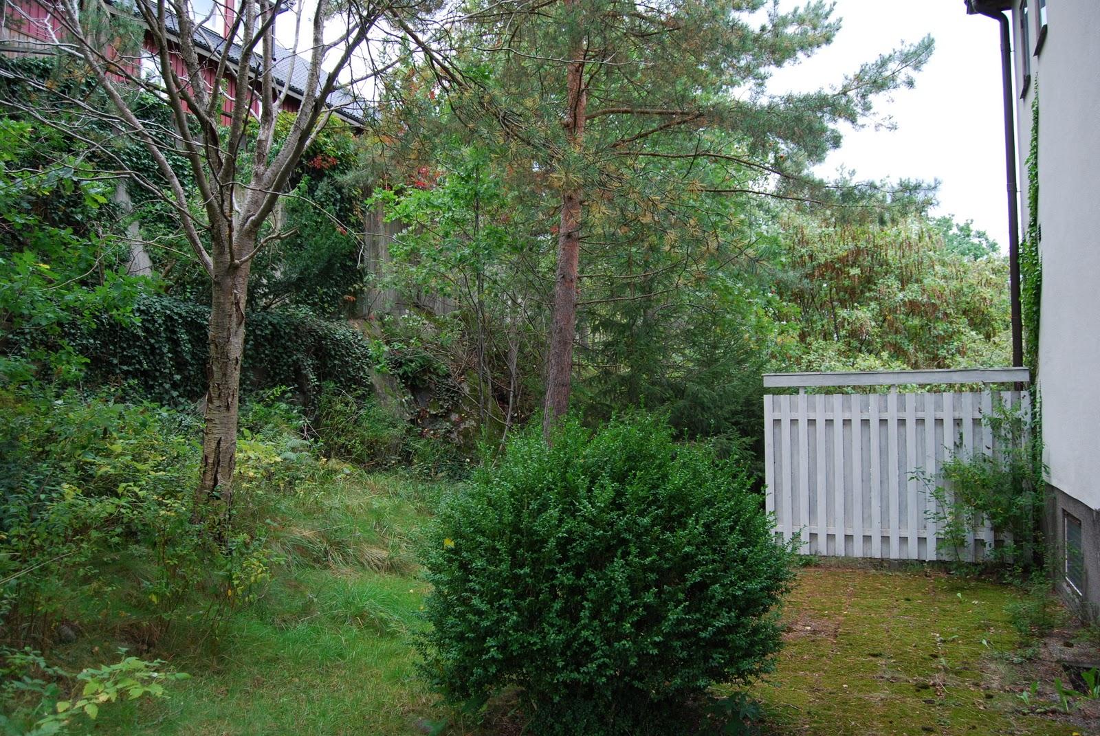 """Funkisbloggen: """"före"""" bilder hus/trädgård"""