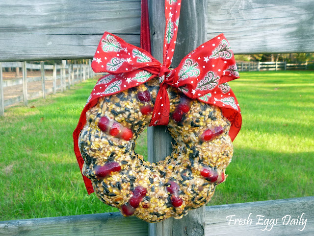 http://www.fresh-eggs-daily.com/2012/12/scratch-and-nut-edible-wreath.html