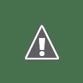 DROGARIA SANTA RITA