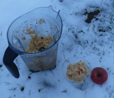 Zubereitung Apfel-Granita mit Schuss