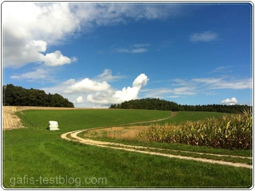 Zwischen Wiesen und Feldern