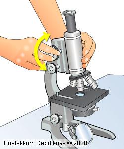 Mikroskop Cahaya