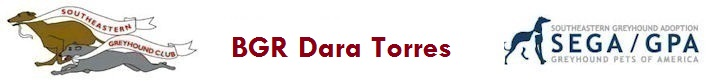 BGR Dara Torres