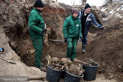Malbork Mass Graves