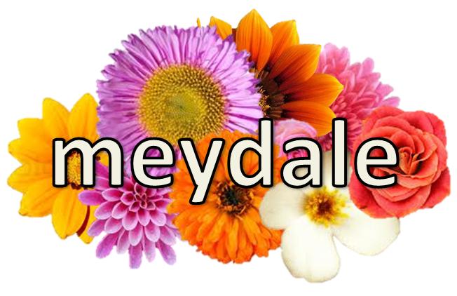 Meydale