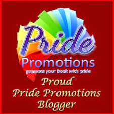GLBT Blogtour Partner