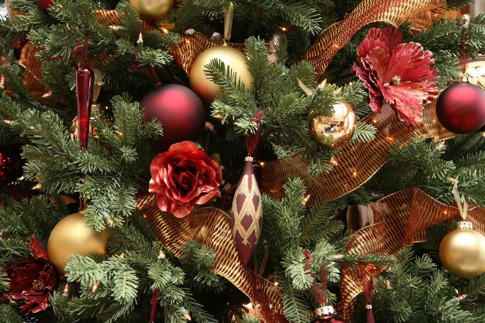 http://3.bp.blogspot.com/-OW5G_Vmv_2Q/Ts1EAm_K3UI/AAAAAAAAAxA/tZ2lknc7tvo/s1600/free+christmas+greeting+cards.jpg