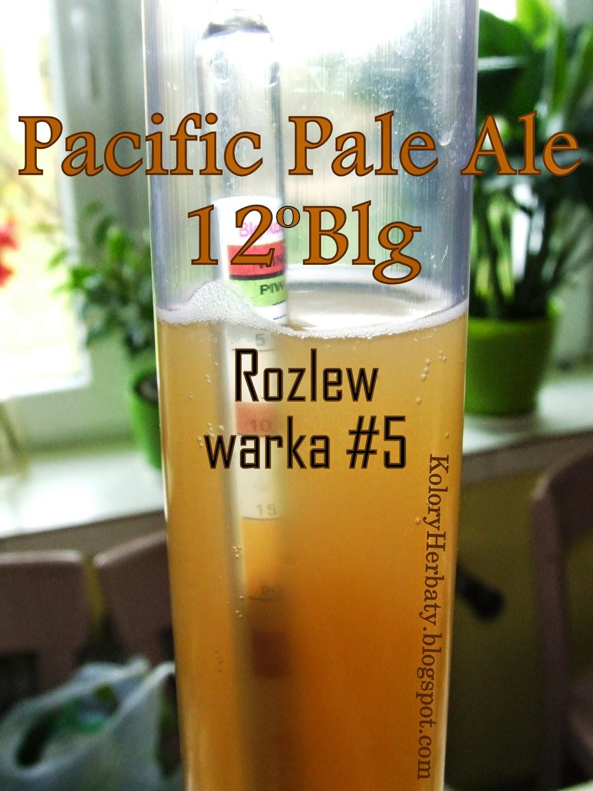 Pacyfic Pale Ale 12Blg rozlew i kapslowanie piwa