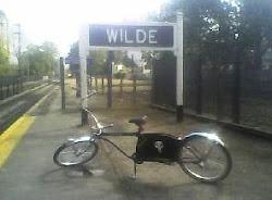LA LUCHA DE WILDE
