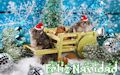 Mascota hamster con mensaje de Feliz Navidad, Merry Christmas y Joyeux Noël