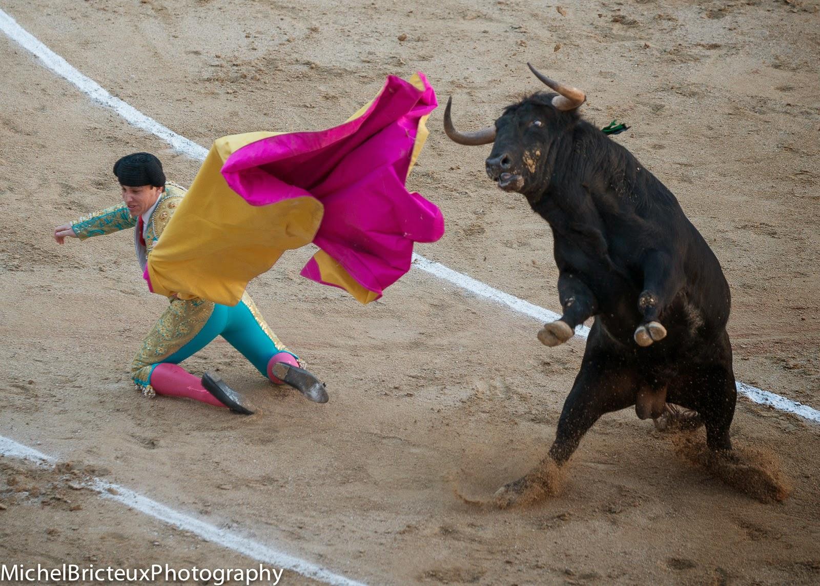 Día de Toros, Las Ventas - 06/04/2014