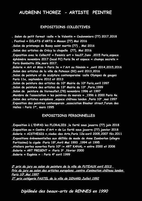 PARCOURS PROFESSIONNEL ARTISTIQUE