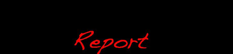 P.O.W. Report