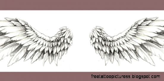 50 Stunning Wing Tattoo Designs  Wing Tattoo Designs