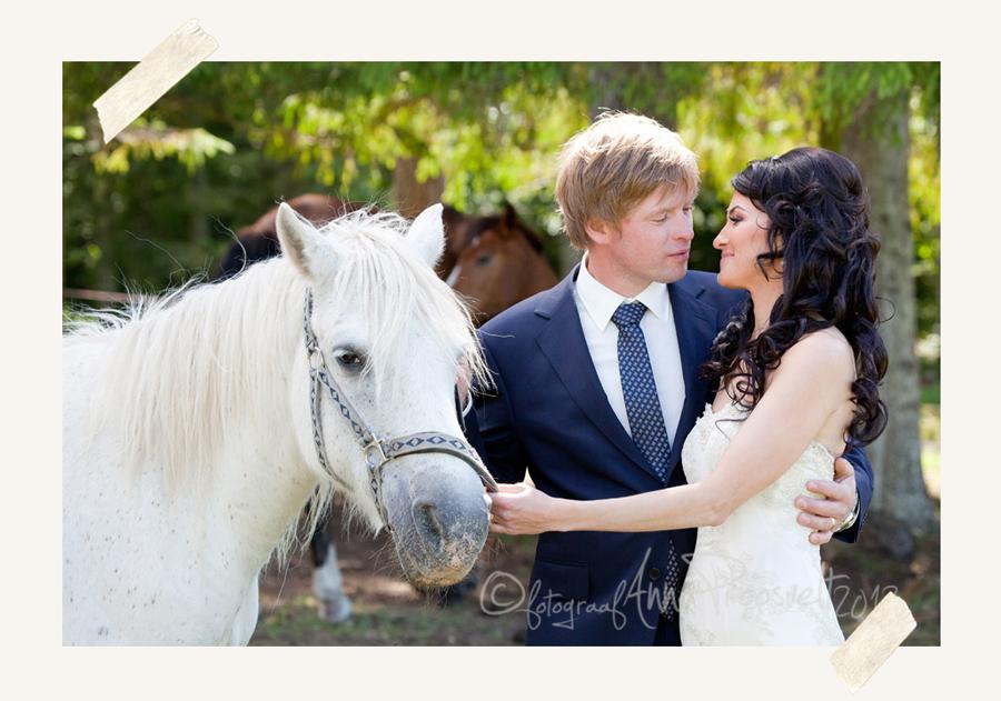 pruutpaar-hobusega-pulmafoto