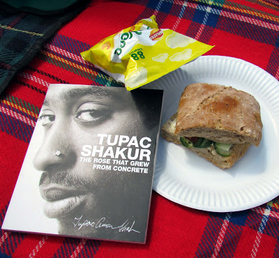 picnic, England, rug, sandwich, Tupac, poetry, reading in sunshine