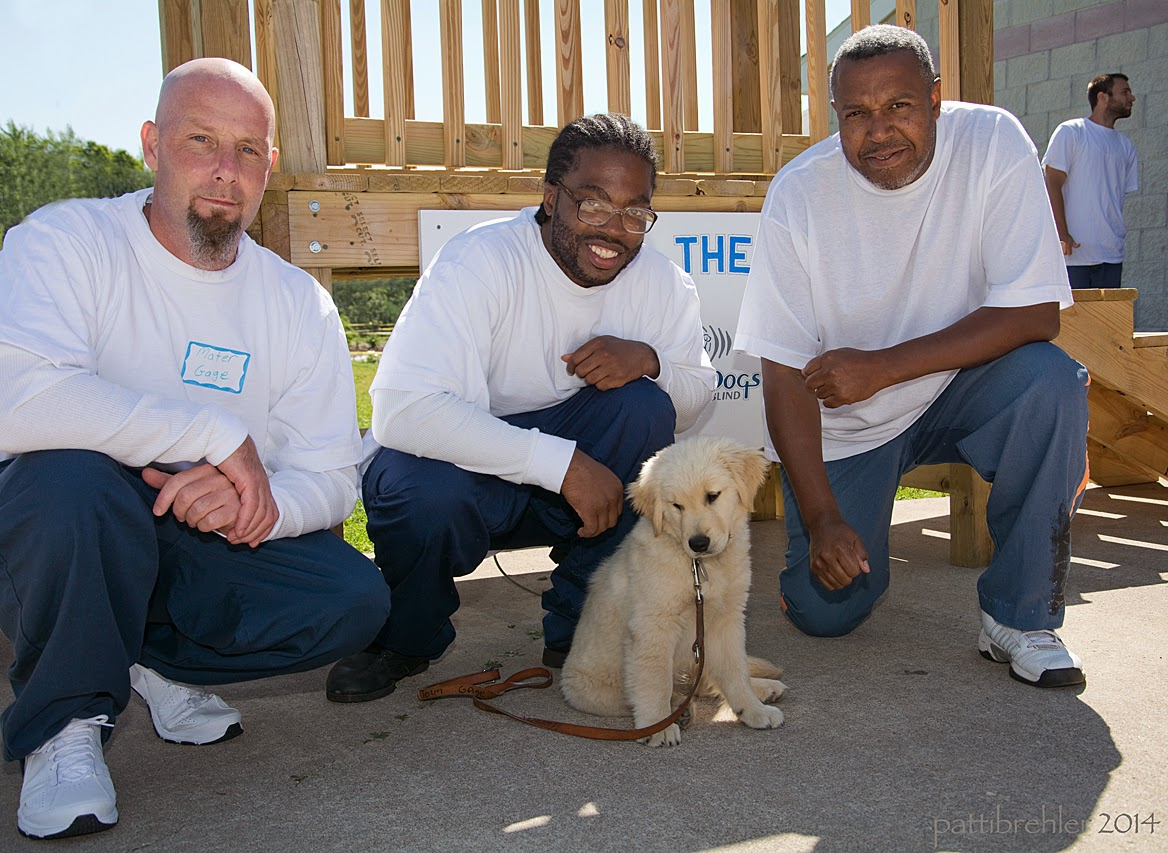 Three men are squatting in front of a wooden staircase, wearing blue prison pants and white t-shirts. The men in the middle and right are african american. In front of the middle man sits a small golden retriever puppy, who is looking slightly down to the ground, with his leash lying on the ground beside him.