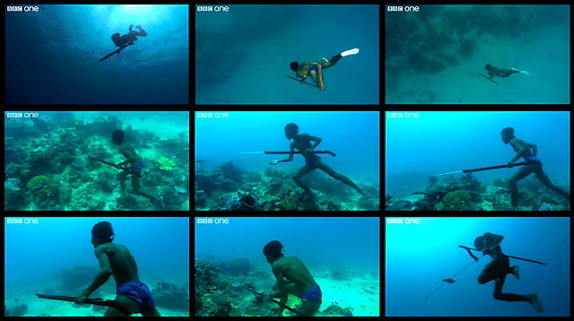 Screen Captures:  BBC One Human Planet series video of Bajau fisherman free-diving over 65 feet (20 meters) to catch a fish